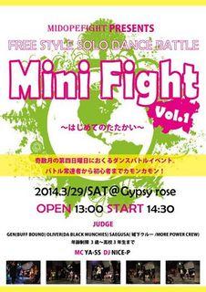 mini fight 2014.jpg